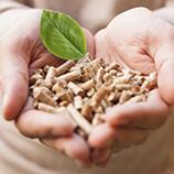 Énergie Biomasse et investissements